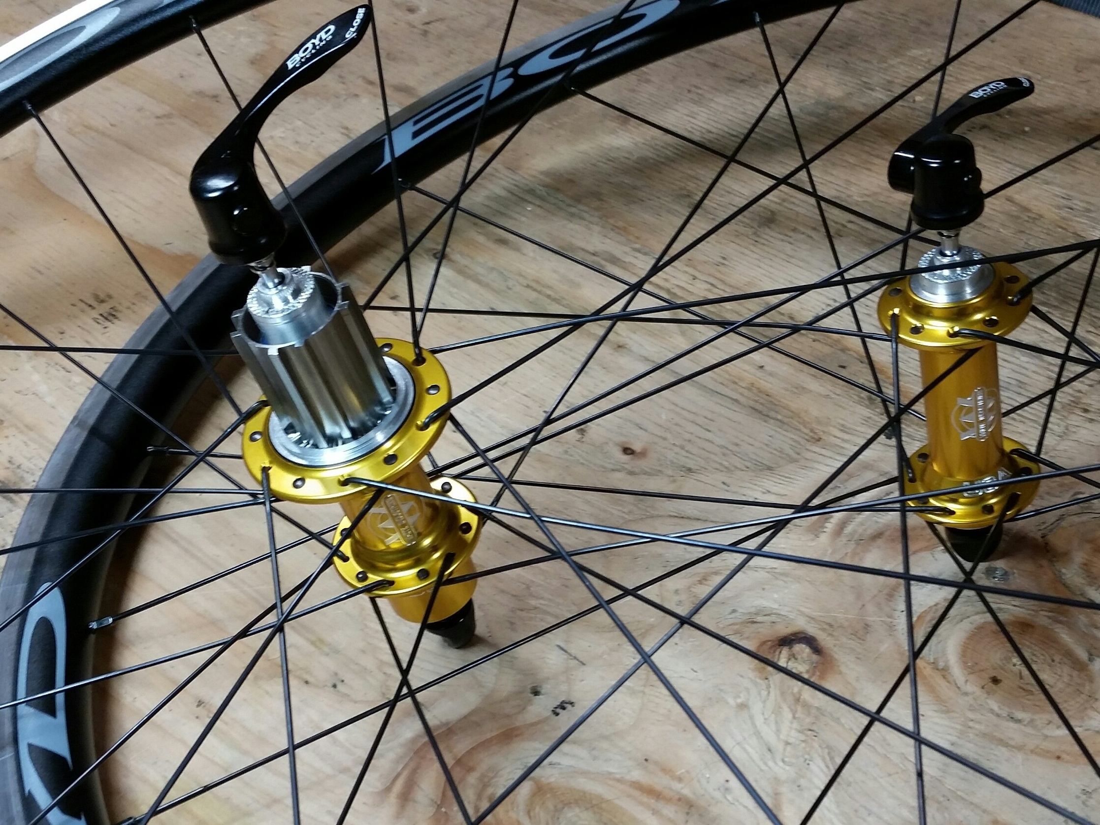 White Industries T11 hubs in gold with Campy freehub body on Boyd Altamont rims