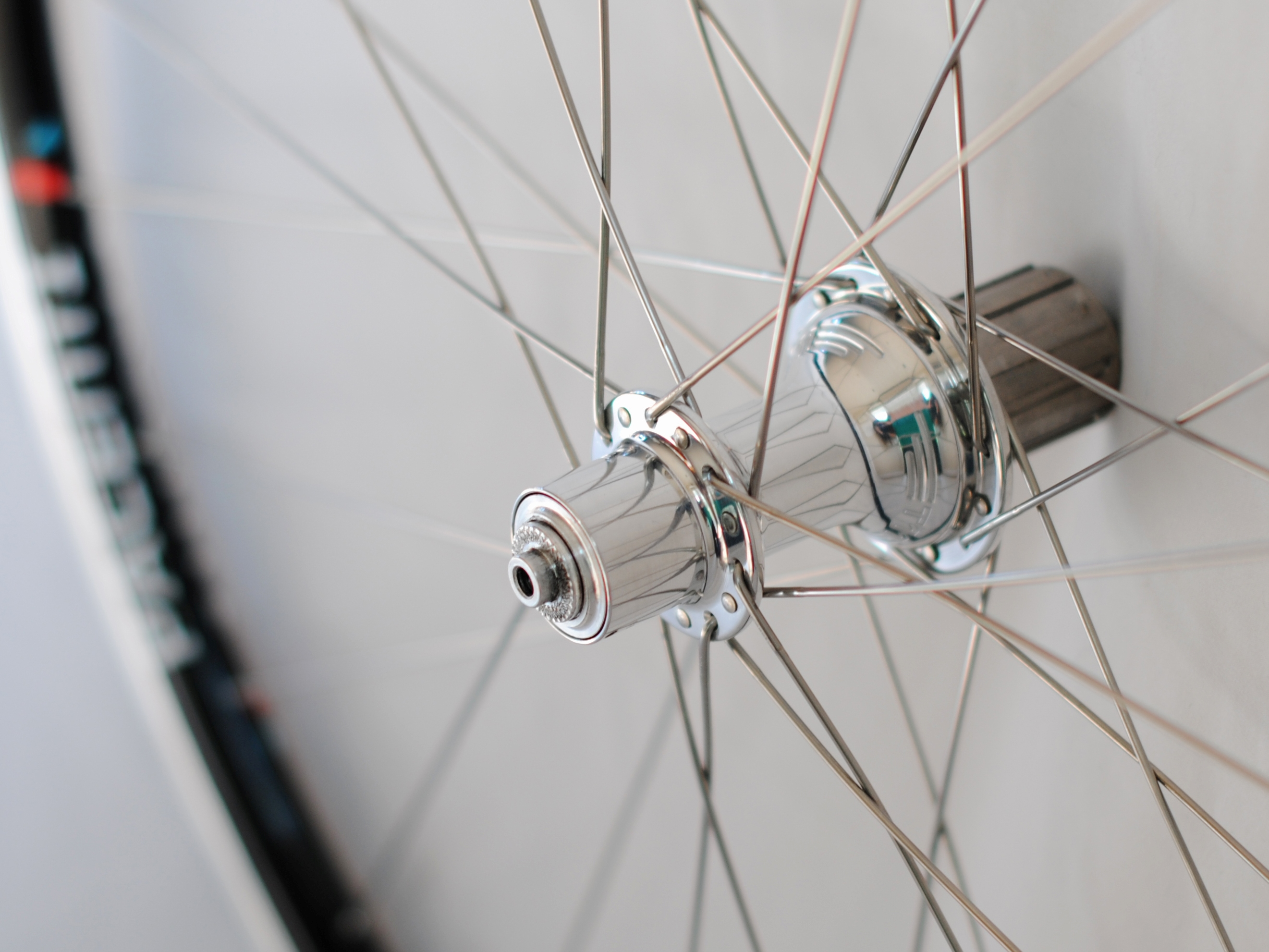 Classic White Industries T11 hubs in silver with Pacenti SL23 rims